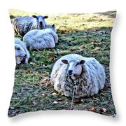 Sitting There Throw Pillow