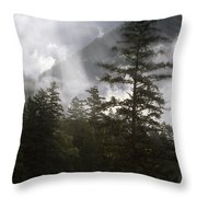 Siuslaw National Forest Throw Pillow