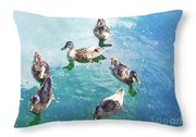 Six Ducks Swim Together Throw Pillow