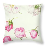 Six Heads Of Old Fashioned Roses Throw Pillow