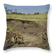 Six Is A Crowd Throw Pillow