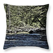 Six Mile Creek Ithaca Ny Throw Pillow