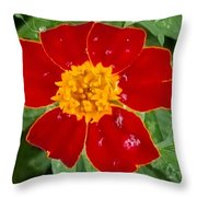 Sixlets Light Maroon Flower Throw Pillow