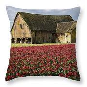 Skagit Barn Throw Pillow