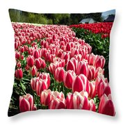Skagit County Tulip Festival Throw Pillow