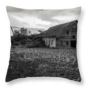 Skagit Flats-6962 Throw Pillow