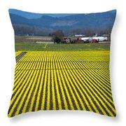 Skagit Valley In Springtime Throw Pillow