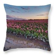 Skagit Valley Tulip Reflections Throw Pillow