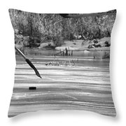 Skating On The Pond Throw Pillow