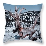 Skating Pine Throw Pillow