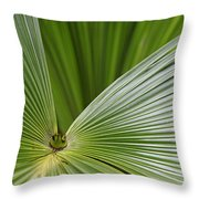 Skc 0690 Convergence Throw Pillow