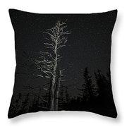 Skeletal Tree Starscape Throw Pillow