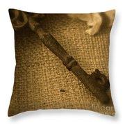 Skeleton Key Throw Pillow by Ann E Robson