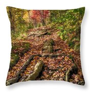 Skeleton Of Graveyard Fields Throw Pillow