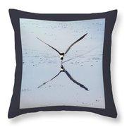 Skimmer On Approach Throw Pillow