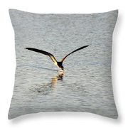 Skimmer Skimming Throw Pillow