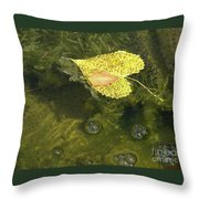Skimming The Surface Throw Pillow