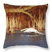 Skimming The Water I Throw Pillow