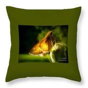 Skipper Butterfly Basking In Sun Throw Pillow