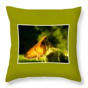 Skipper Butterfly With Sun Shine Throw Pillow