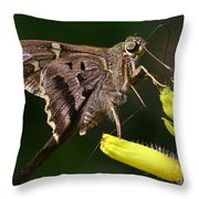 Skipper Delight Throw Pillow