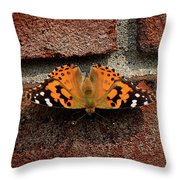 Skipper Warming In The Morning Sun Throw Pillow
