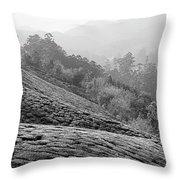 Skn 6521 Nature's Bounty B/w Throw Pillow