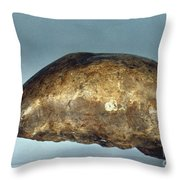 Skull Of Java Man Throw Pillow