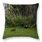 Skunk And Rabbit Surprise Throw Pillow