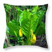 Skunk Cabbage In Bloom Throw Pillow