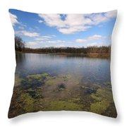 Sky Clouds Water Throw Pillow