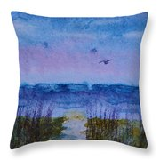 Sky Color Throw Pillow