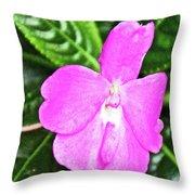 Sky Flower In Huntington Botanical Gardens In San Marino-california  Throw Pillow