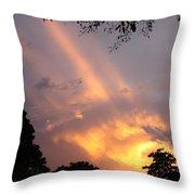 Sky King Throw Pillow