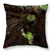 Sky View Through A Hollow Tree Trunk Throw Pillow
