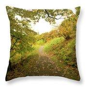 Skylands Magic H Throw Pillow