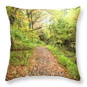 Skylands Trail H Throw Pillow