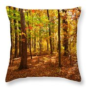 Skyline Drive At Low Gap Shenandoah National Park Throw Pillow