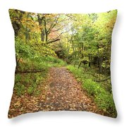 Skyline Trail P Throw Pillow