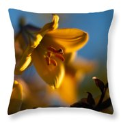 Skylit Lily Throw Pillow