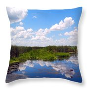 Skyscape Reflections Blue Cypress Marsh Florida Collage 1 Throw Pillow