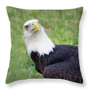 Skyward Eagle Throw Pillow