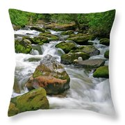 Slate Creek, Nez Perce National Forest, Idaho Throw Pillow