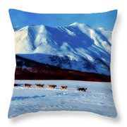 Sledding In Russia Throw Pillow
