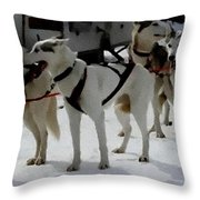 Sledge Dogs H A Throw Pillow