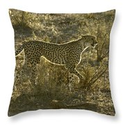 Sleek And Spotted Throw Pillow
