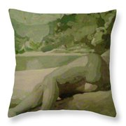Sleep Behind The River Throw Pillow
