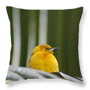 Sleep Little One Throw Pillow