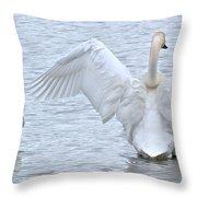 Sleep - Stretch Throw Pillow