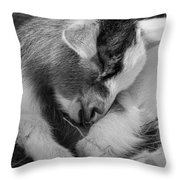 Sleeping Baby, Black And White Throw Pillow